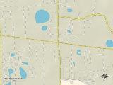 Political Map of University Park, FL Prints