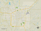 Political Map of Texarkana, AR Photo