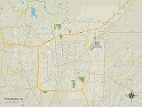 Political Map of Texarkana, AR Photo