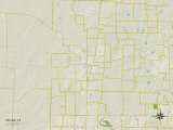 Political Map of Celina, TX Print