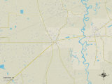 Political Map of Dayton, TX Photo