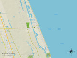 Political Map of Flagler Beach, FL Print