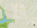 Political Map of Rogersville, AL Photo