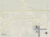 Political Map of Vernal, UT Prints