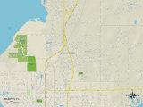 Political Map of Memphis, FL Photo