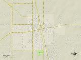 Political Map of Wauchula, FL Photo