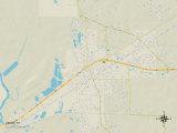 Political Map of Vidor, TX Prints