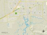 Political Map of Suisun City, CA Photo