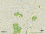 Political Map of Pine Ridge, FL Prints