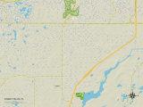 Political Map of Shady Hills, FL Prints
