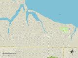 Political Map of West Bradenton, FL Prints