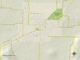 Political Map of Prairie Grove, AR Photo