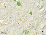 Political Map of Vista, CA Prints