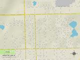 Political Map of North De Land, FL Posters
