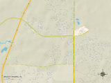 Political Map of Wesley Chapel, FL Prints
