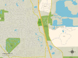 Political Map of Three Oaks, FL Prints
