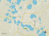 Political Map of Umatilla, FL Prints