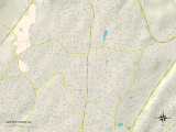 Political Map of Center Point, AL Photo
