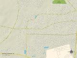 Political Map of Myrtle Grove, FL Print