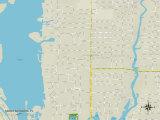 Political Map of South Sarasota, FL Photo