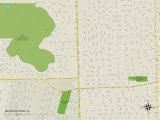 Political Map of Melrose Park, FL Prints