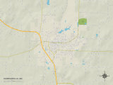 Political Map of Harrisonville, MO Photo