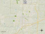Political Map of Joplin, MO Prints