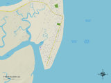 Political Map of Tybee Island, GA Prints