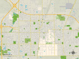 Political Map of Champaign, IL Print