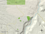 Political Map of White Rock, NM Photo