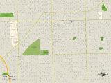 Political Map of Oak Lawn, IL Prints