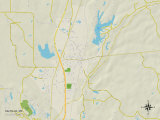 Political Map of Saltillo, MS Prints