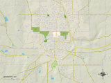 Political Map of Wooster, OH Photo