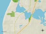 Political Map of Douglas, MI Art