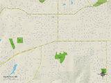 Political Map of Ellisville, MO Prints