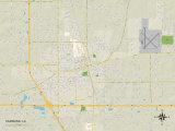 Political Map of Hammond, LA Photo
