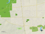 Political Map of Steger, IL Photo