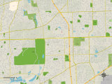 Political Map of Woodridge, IL Prints