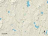 Political Map of Hartford, ME Prints