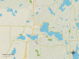 Political Map of Forest Lake, MN Photo