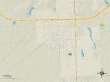Political Map of Tilton, IL Photo