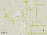 Political Map of Roswell, NM Kunstdruck