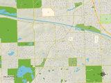 Political Map of Palos Park, IL Print