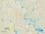 Political Map of Beaumont, TX Prints