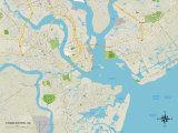 Politische Karte von Charleston, South Carolina Kunstdrucke