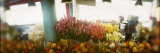 Flower Shop, Pike Place Market, Seattle, Washington State, USA Photographic Print by  Panoramic Images