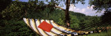 Hammock with Pillows in a Forest, Baden-Wurttemberg, Germany Photographic Print by Panoramic Images 
