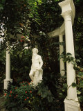 Statue in Garden, Magnolia Plantation and Gardens, Charleston, Charleston County, South Carolina Photographic Print