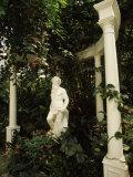 Statue in Garden, Magnolia Plantation and Gardens, Charleston, Charleston County, South Carolina Photographic Print