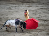 Matador and a Bull in a Bullring, Lima, Peru Photographie